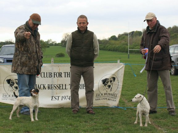 Best Over Jack Russell (Left) and Reserve.
