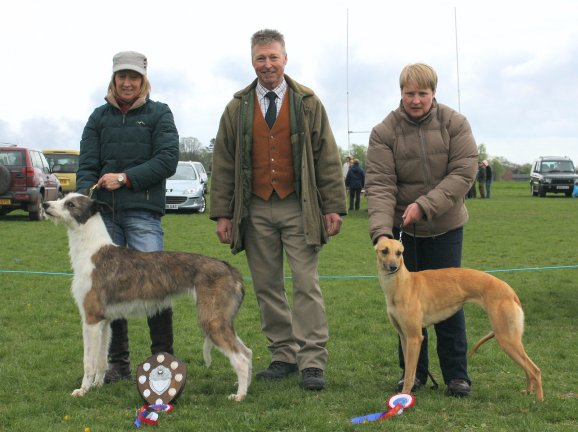 Best Lurcher (Left) and Reserve.