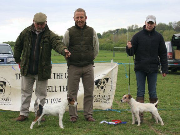 Best Under Jack Russell (Left) and Reserve.