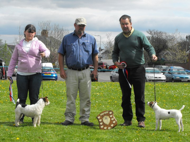 Best Under Jack Russell (right) and Reserve