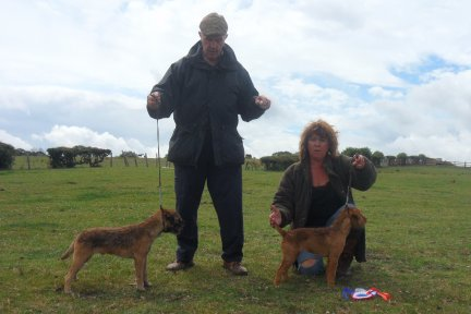 Best Coloured Puppy (left) & Reserve